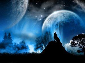 Werewolf-real